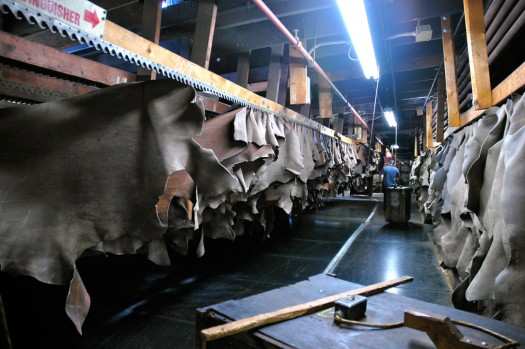 Drying Leather Hides at Horween Leathers